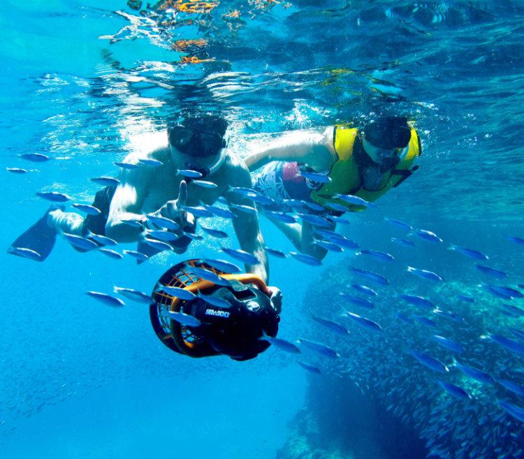 Snorkeling - Grand Velas Los Cabos