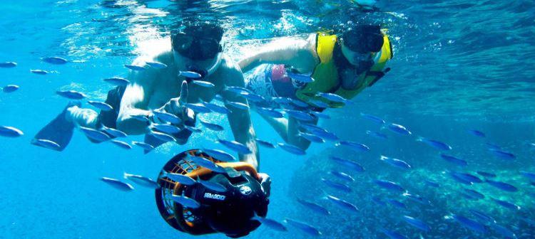 Snorkel en Los Arcos - Grand Velas Los Cabos